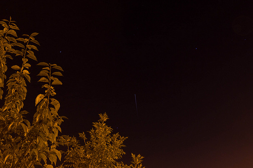 ISS Pass Behind The Cherry Tree